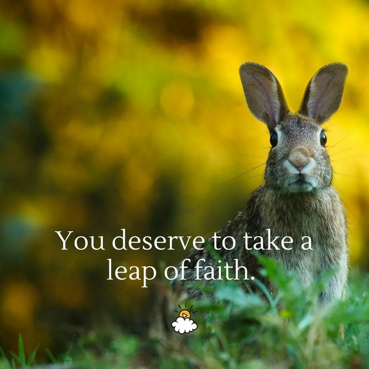 Inspirational Quotes You Deserve To Take A Leap Of Faith